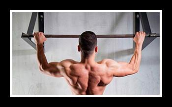 Какие мышцы качаются при подтягивании на турнике