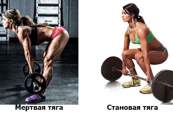 Становая тяга и мертвая - отличия