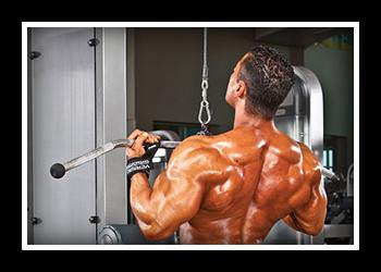 Упражнения на спину в зале фото
