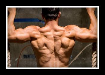 Подборка упражнений мужчинам для спины в домашних условиях