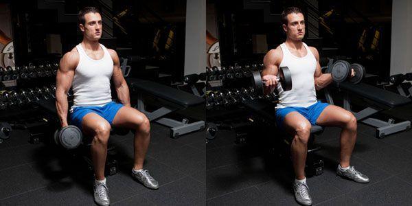 supinaciya-na-biceps-sidya