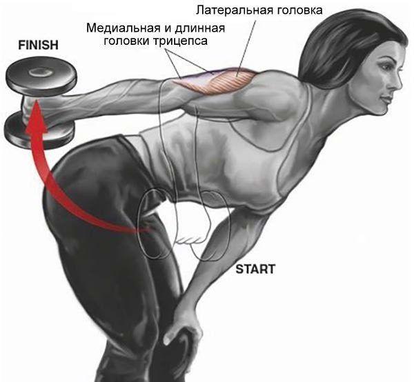 Трицепс с упором на колено
