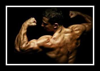 Гипертрофия мышц фото