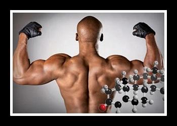 Тестостерон фото