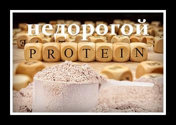 Какой сывороточный протеин лучше рейтинг лучших как выбрать