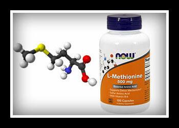 метионин фото