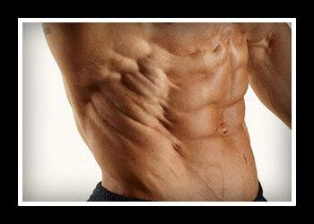 Косые мышцы живота у девушек