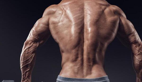Широкая спина фото 6