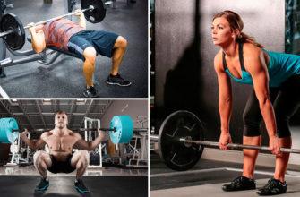 3 основных упражнения фото