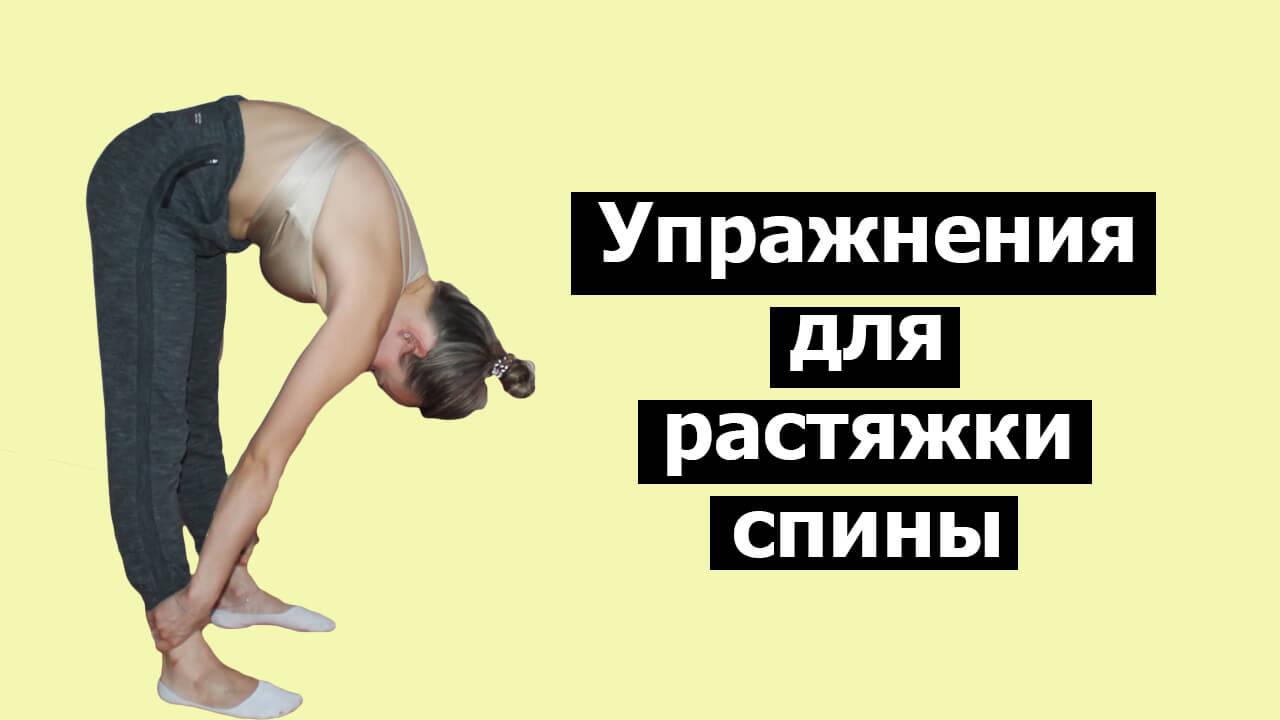 Растяжка спины: фото