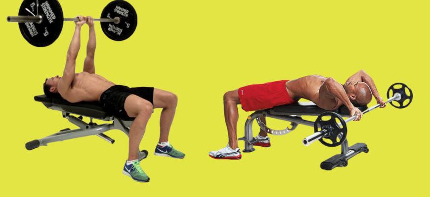 Упражнения на трицепс со штангой: фото.