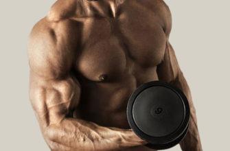 Изолирующие упражнения на бицепс: фото.