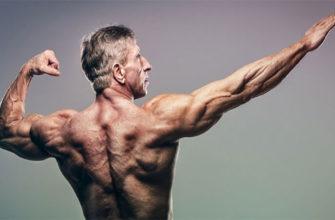 Развитие мышц в возрасте за сорок: фото 1.