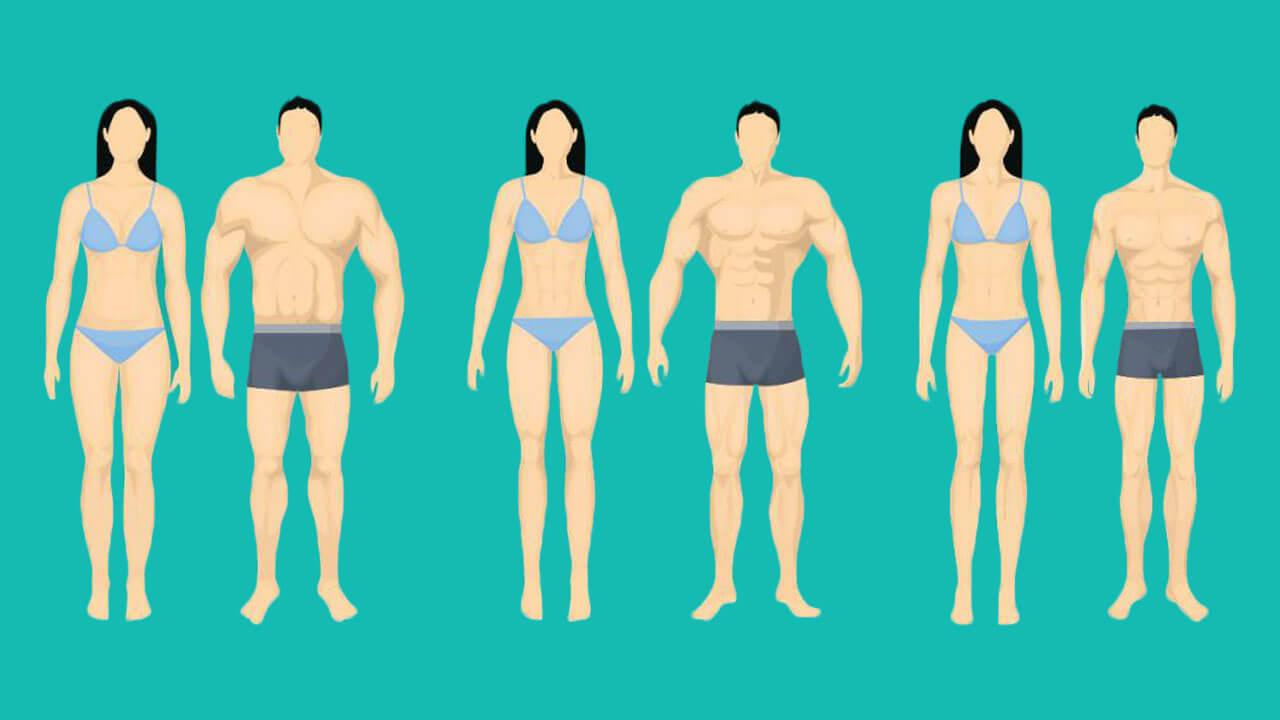 Тест на тип телосложения: фото.