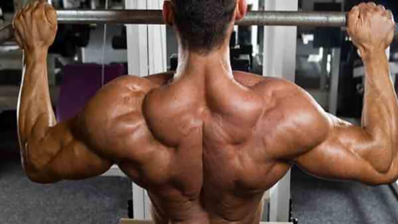 Упражнения на верх спины: фото.