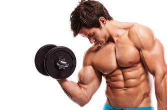 Что происходит в мышцах после тренировки: фото1.