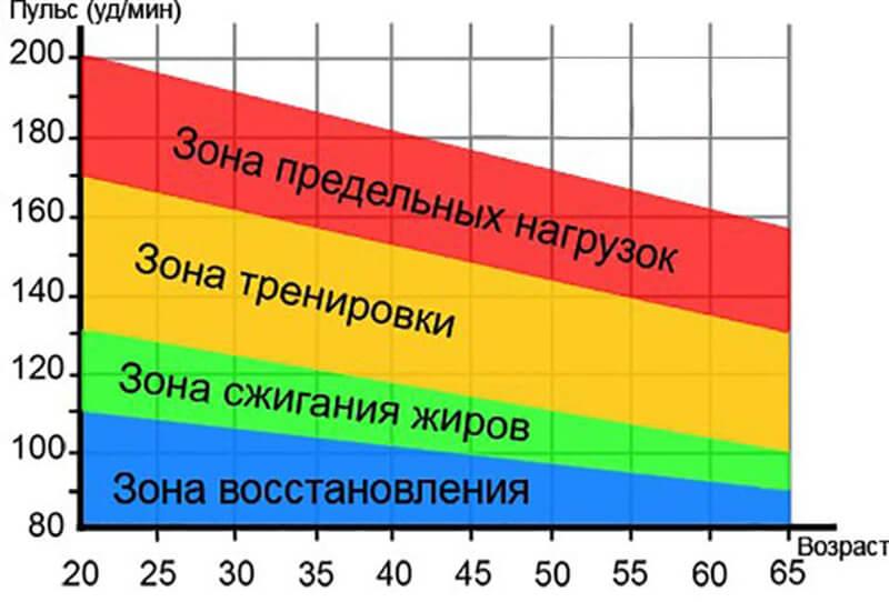 График с зоной пульса.