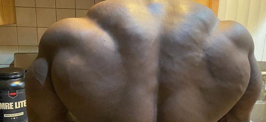 Спина мутанта: фото.