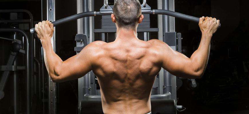Упражнения для спины: фото.