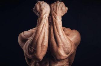 Упражнения на предплечья: фото.